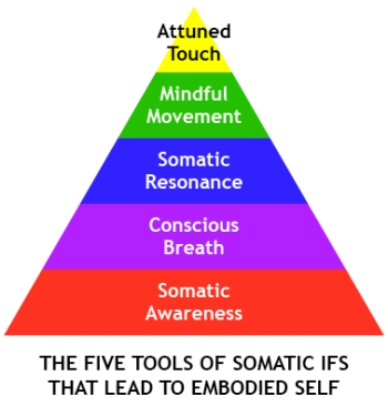 somatic_IFS_triangle
